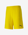 Puma teamFINAL 21 Shorts