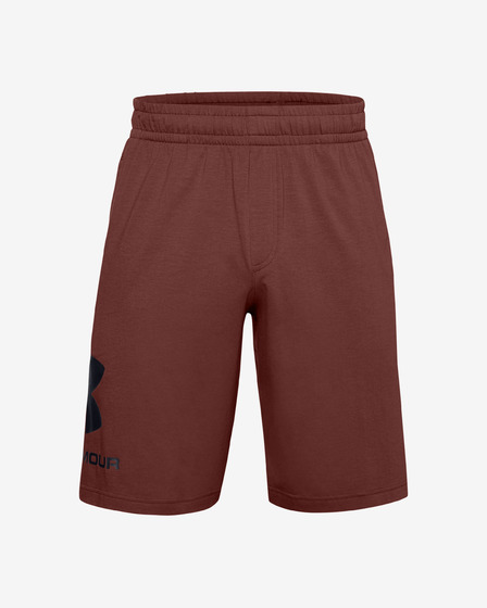 Under Armour Sportstyle Short pants